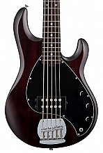 Sterling by Music Man SUB SR-5 Walnut Satin