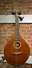 Ashbury AM130 mandoline