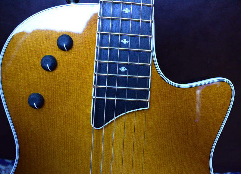 Taylor T5z standard Honey Sunburst