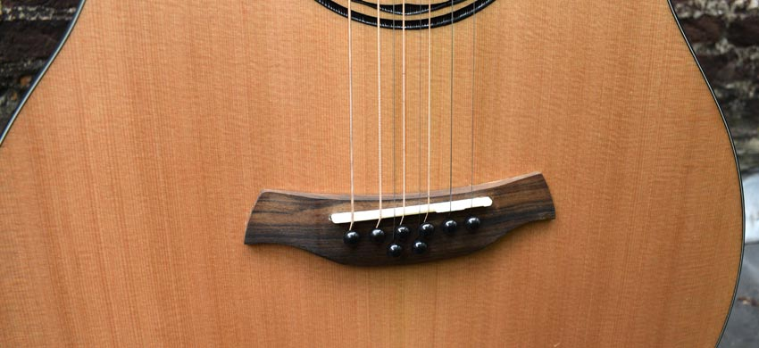 Baton Rouge AR11C/ACE 8 8-string